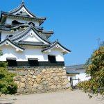 彦根藩の幕末や戊辰戦争における動向は?最後の藩主は誰?